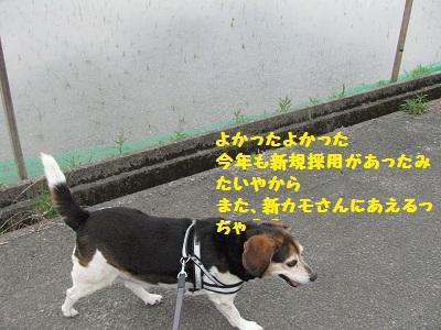 009_20120415192810.jpg