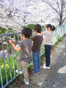 原田さとみ オフィシャルブログ「SATOMI'S BLOG」-201004061537004.jpg