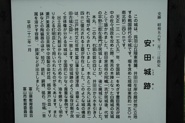 DSC_0030s_20100705205342.jpg
