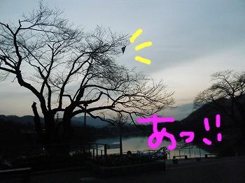 DSCF8344.jpg