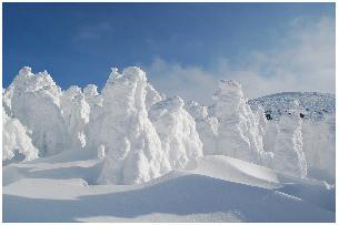 雪の蔵王1