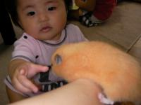 SANY0229_convert_20100818231745.jpg