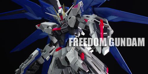 metal_freedom049.jpg