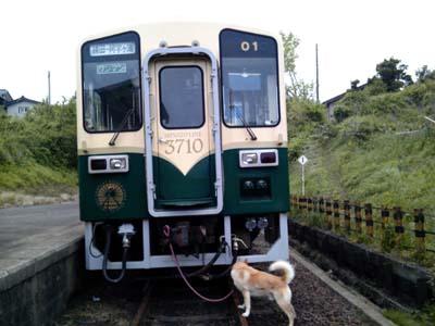 minatosen_20110602060215.jpg
