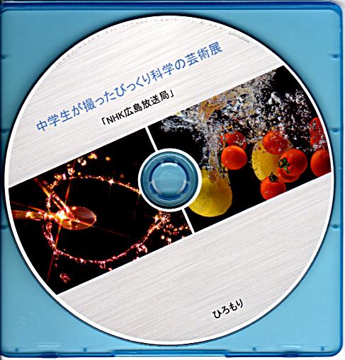 sizescanDVD.jpg