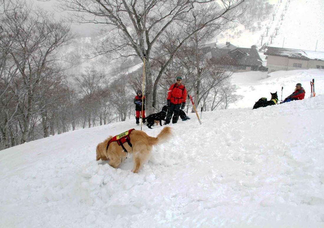 谷川雪中訓練(2)