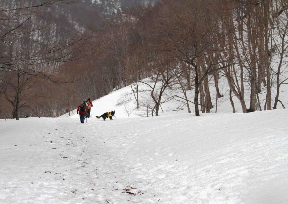 谷川雪中訓練(14)