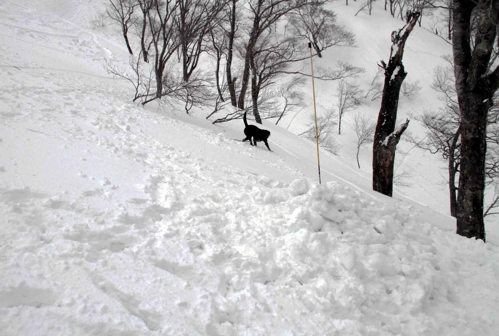谷川雪中訓練 0401(15)