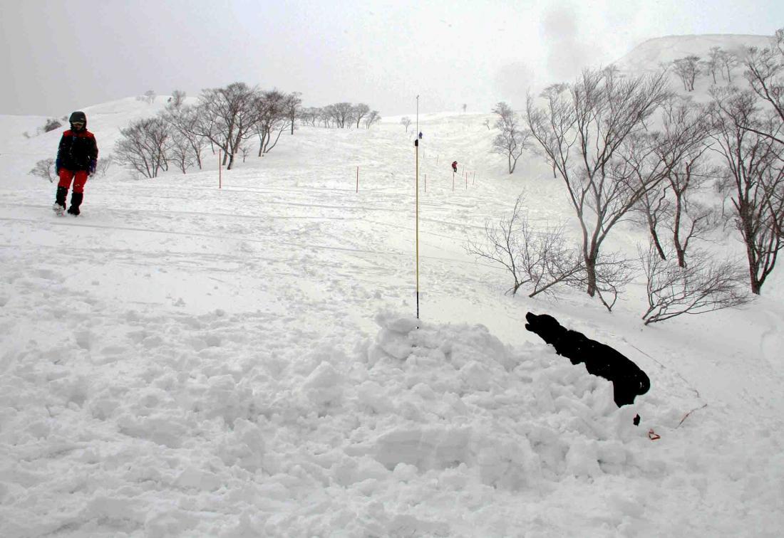 谷川雪中訓練 0401(16)
