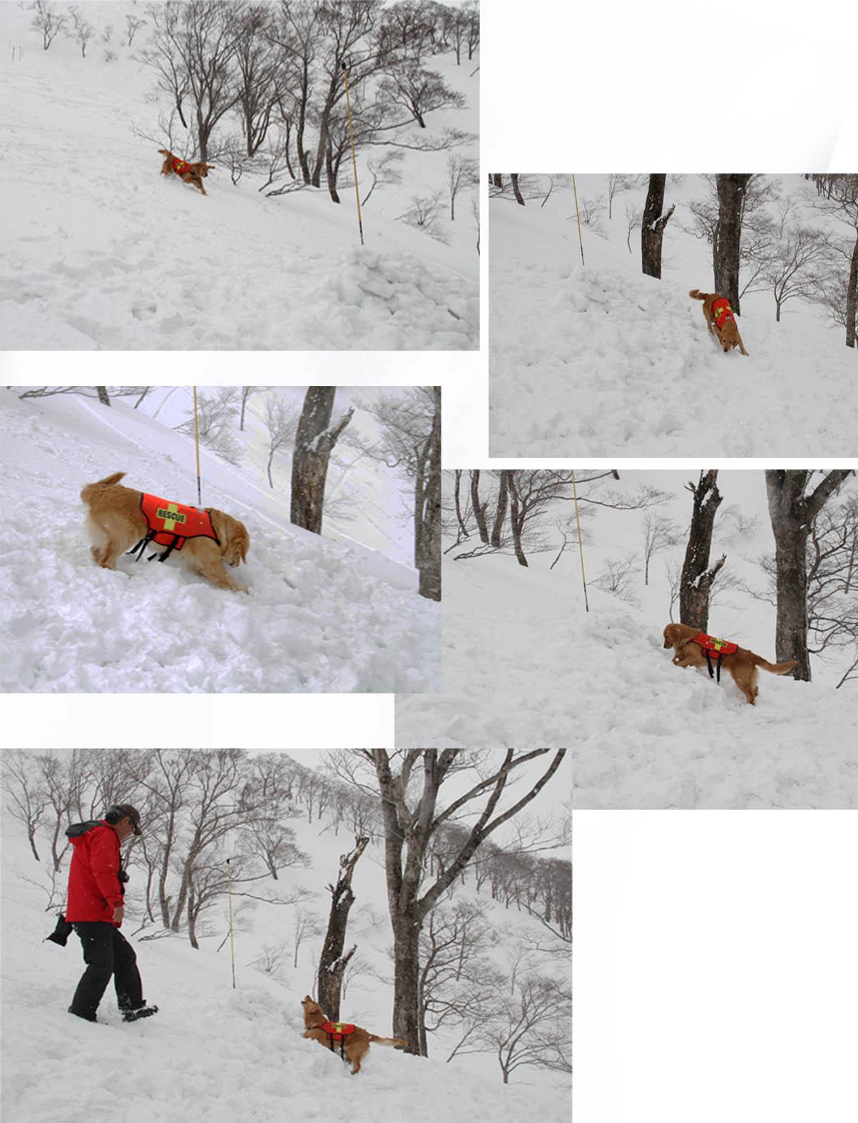 谷川雪中訓練 0401(22) GM