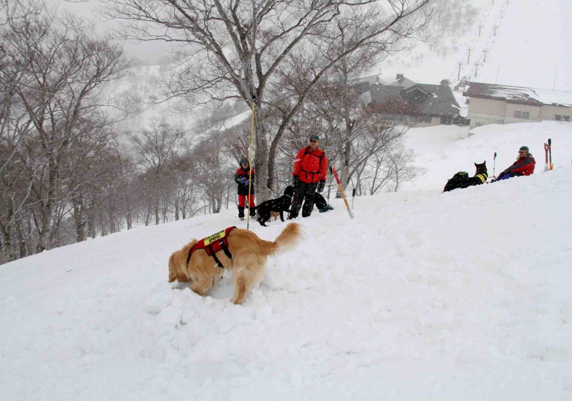 谷川雪中訓練 0401(36)