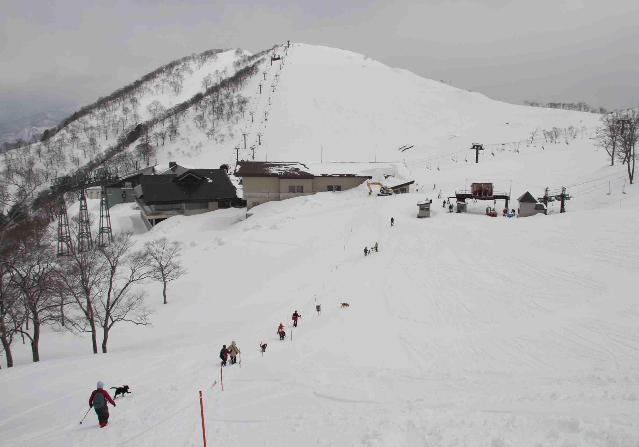 谷川雪中訓練 0401(47)