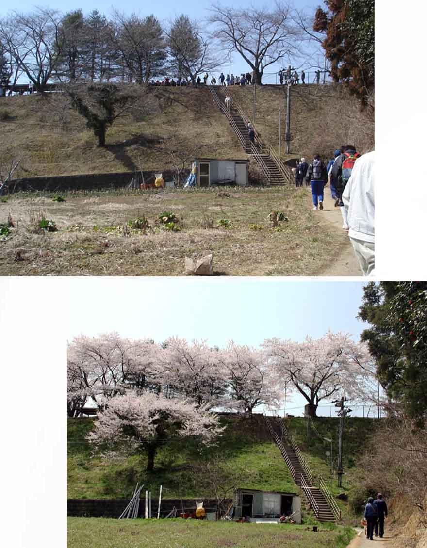 慰霊と献花の旅 捜索施設(8)