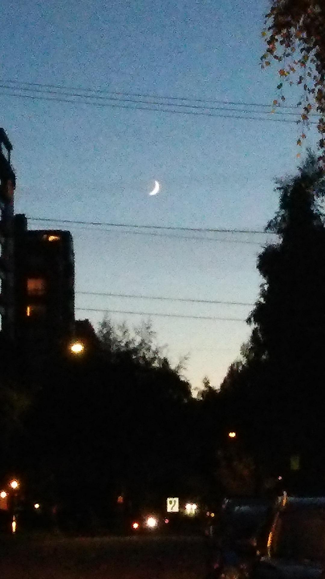 バンクーバーの月