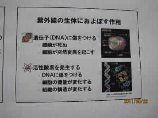 044明薬大_convert_20110529104253