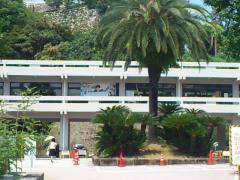 高知県庁渡り廊下