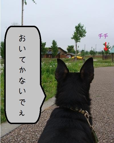 2011-06-01-3.jpg