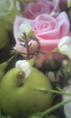 Image1017_20130201100420.jpg