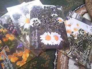 セナコ屋@鈴木商店で販売予定のチャリティーポストカード。
