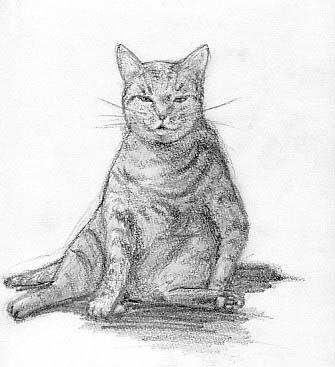 嫁画・高校時代に描いた猫写真の模写。家で飼っている猫ではない。