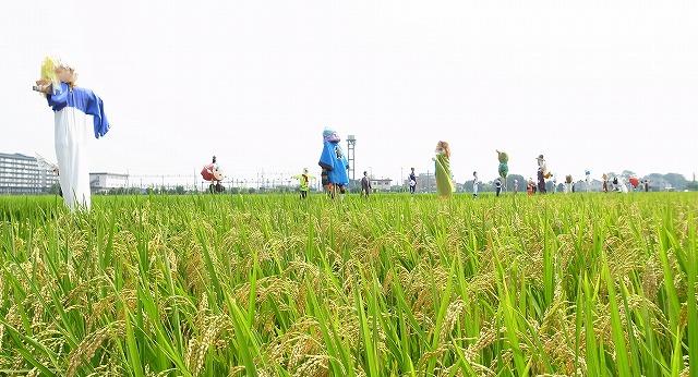 2013-08-13 川越スナップ 030