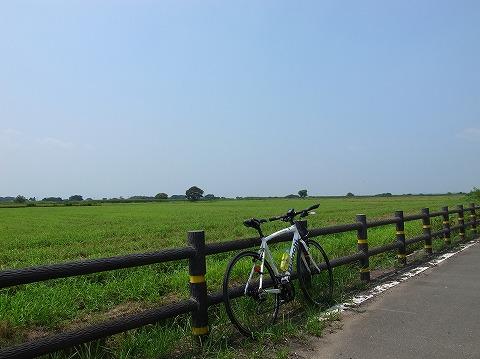 2013-08-13 サイクリングロード 002