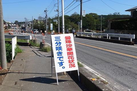 2013-09-18 奥武蔵GL 009