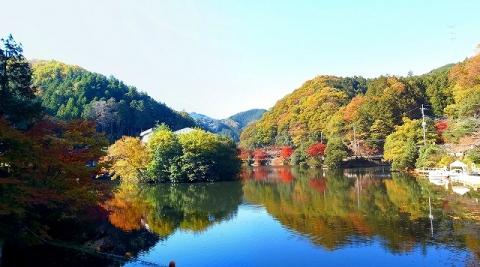 2013-11-20 鎌北湖 049_stitch