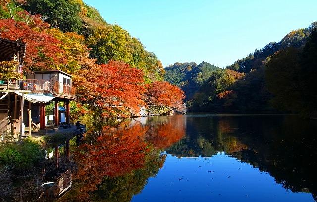 2013-11-20 鎌北湖 120