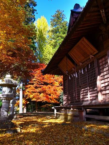 2013-11-27 星宮神社 014