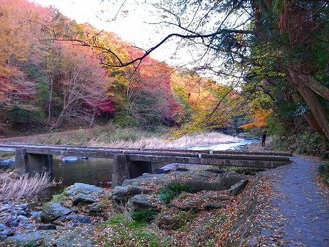 2013-11-27 嵐山渓谷 006
