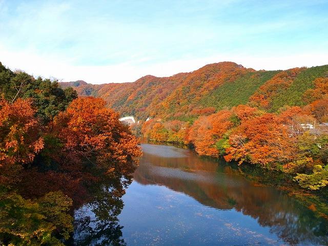 2013-11-27 玉淀湖 003