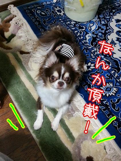 20130918_184924.jpg