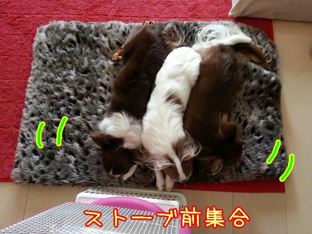 20131124_111355.jpg