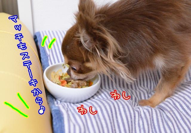 DSC_0009_20131101192534476.jpg