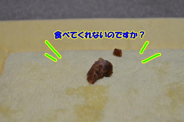 DSC_4606_20130212200421.jpg