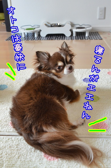 DSC_7965.jpg