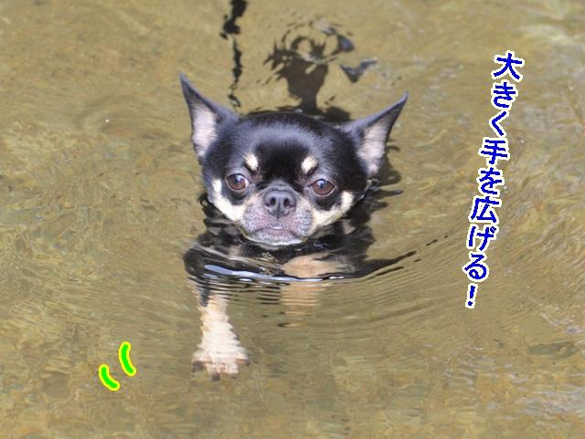 DSC_8138.jpg