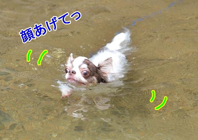 DSC_8150.jpg