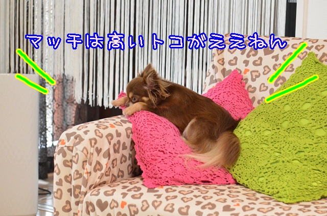 DSC_9211.jpg