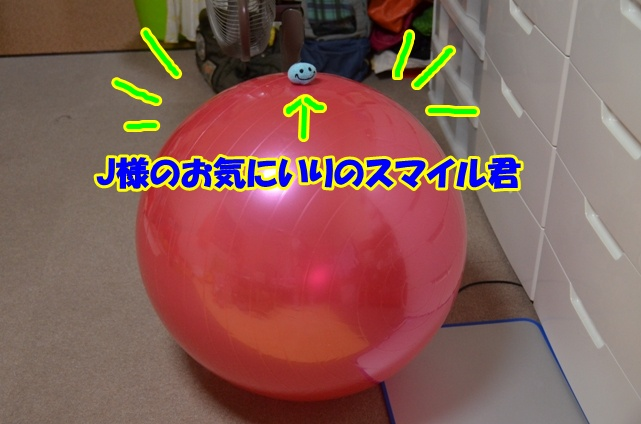 DSC_9497.jpg
