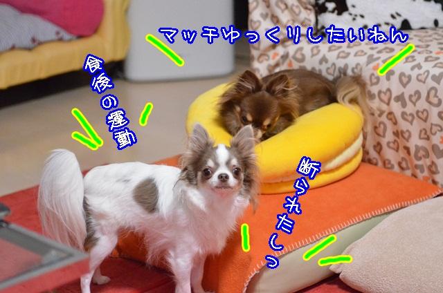 DSC_9720.jpg