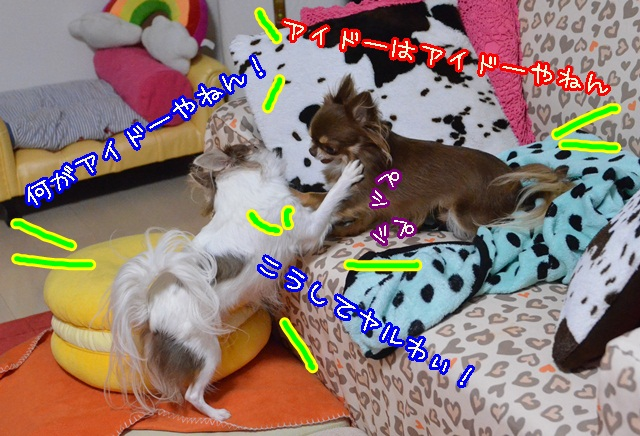 DSC_9875_2013102214112224f.jpg