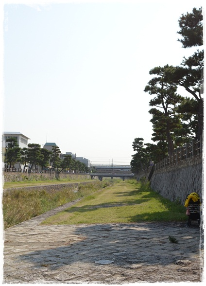 DSC_9943.jpg