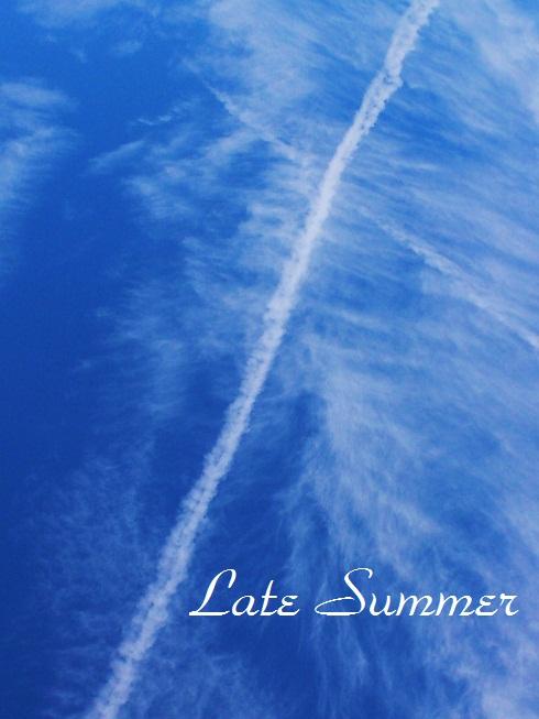 DSC_1045 (2)summer sky