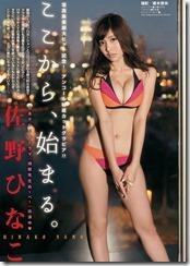 sano-hinako-261212 (3)