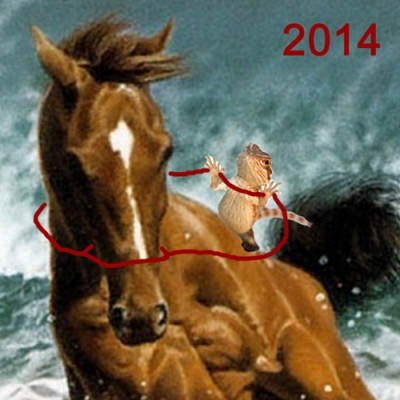 horse_2014_test.jpg