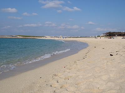 トロピカルビーチ_おっきいビーチ01