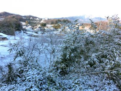 2013-1-28yuki.jpg