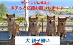 1_20110918222418.jpg